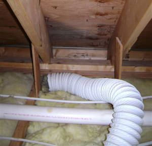 Moist air from a dryer vent has caused mold to grow on the roof sheathing